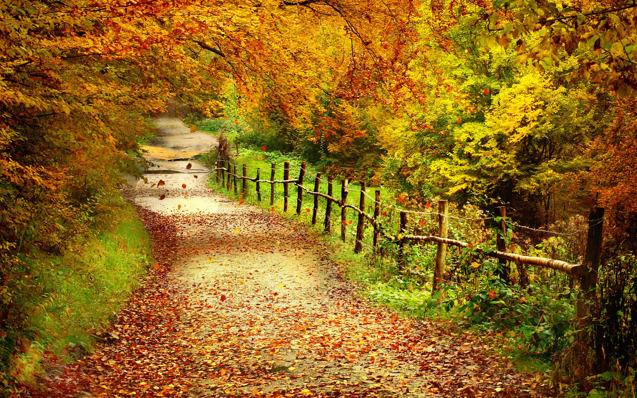 free-autumn-wallpapers-15